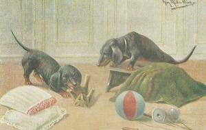 Cuccioli-che-giocano-da-libro